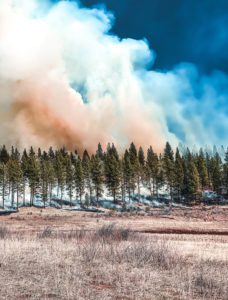Smoke billowing from timber into blue sky